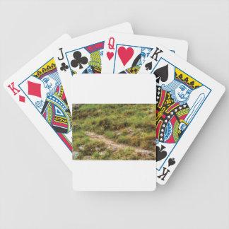Baralhos Para Poker trajeto gramíneo