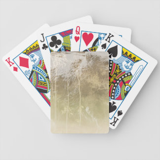 Baralhos Para Poker Urso expor