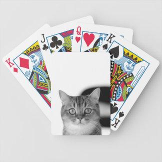 Baralhos Para Pôquer Gato preto e branco que olha reto em você