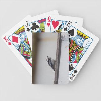 Baralhos Para Pôquer Wagtail Pied