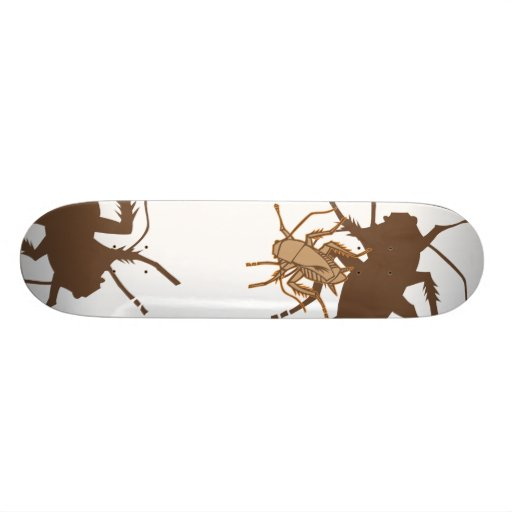 barata/marrom skate boards