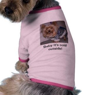 Bebê, é parte externa fria! roupas para cães