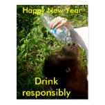 Bebendo da celebração cartão postal