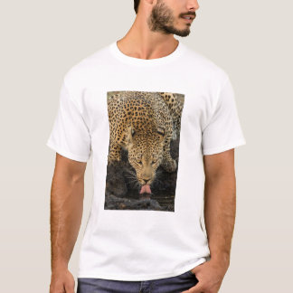 Bebendo do leopardo, África do Sul Camiseta