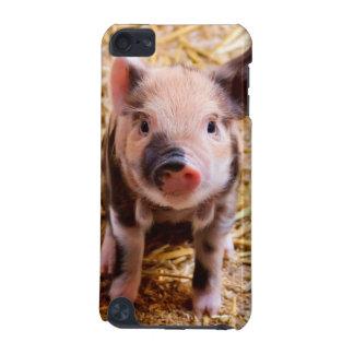 Bebês bonitos dos animais de fazenda do leitão do capa para iPod touch 5G