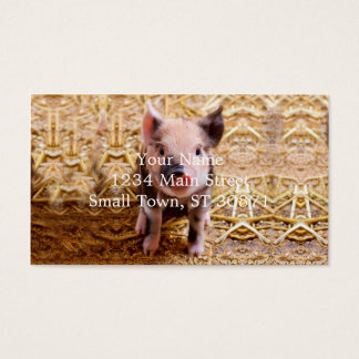 Bebês bonitos dos animais de fazenda do leitão do cartão de visitas