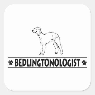 Bedlington Terrier cómico Adesivo Quadrado