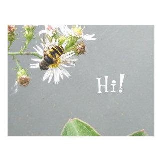 Beefly, olá!! Cartão