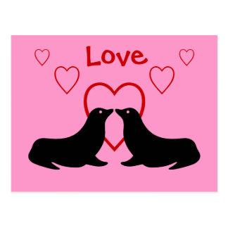 Beijando leões de mar - cartão do amor