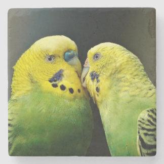 Beijando o pássaro do papagaio de Budgie Porta Copos De Pedras