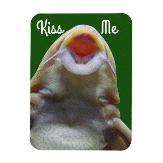 Beije-me peixes ímã