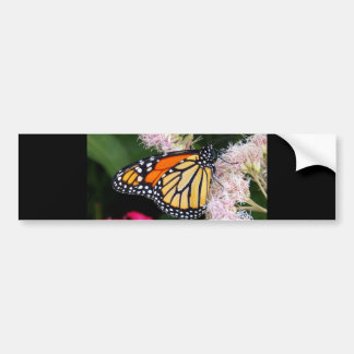 Beijo da borboleta adesivos