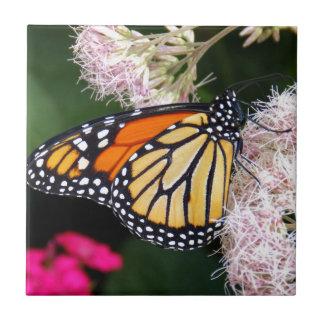 Beijo da borboleta azulejo de cerâmica
