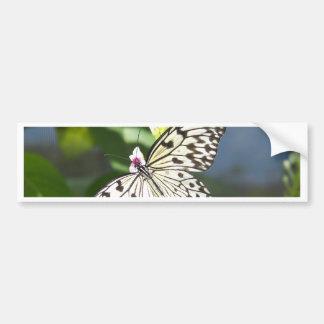 Beijos da borboleta adesivo