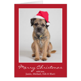 Beira Terrier que veste um chapéu do papai noel Cartão Comemorativo