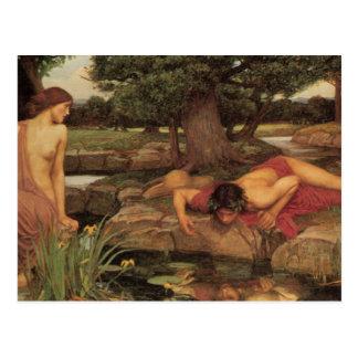 Belas artes do eco e do narciso cartão postal