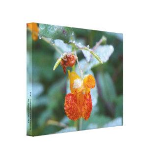 Beleza floral minúscula impressão em canvas