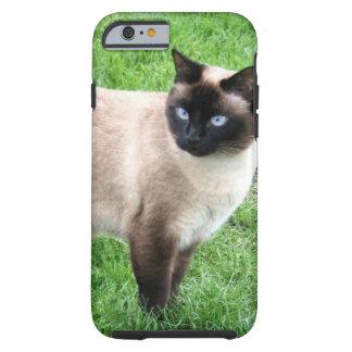 BELEZA SIAMESE CAPA TOUGH PARA iPhone 6