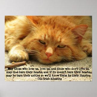 Bênção irlandesa engraçada com gatinho de sorriso poster