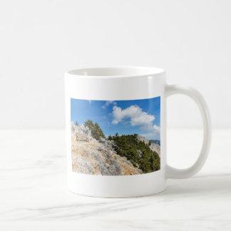 Bench na montanha rochosa com árvores e o céu azul caneca de café