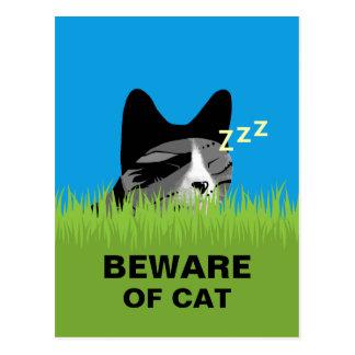 Beware do gato - gato do sono cartão postal