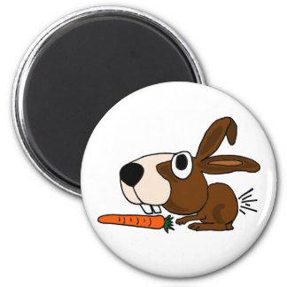 BH coelho e cenoura engraçados de coelho Imas De Geladeira