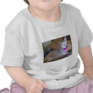 Bigode & chihuahua do bowtie camiseta