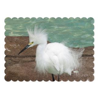 bird-29.jpg convite 12.7 x 17.78cm