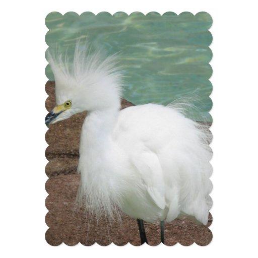 bird-29.jpg convite personalizados