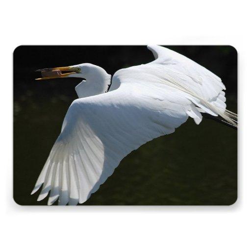 bird-4.jpg convite personalizado