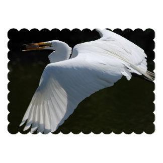 bird-4.jpg convites personalizados