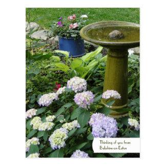 Birdbath customizável & cartão inglês do jardim