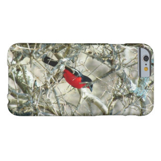 Birdee selvagem capa barely there para iPhone 6