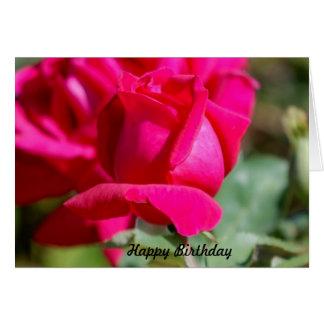 Birtrhday feliz cartão comemorativo