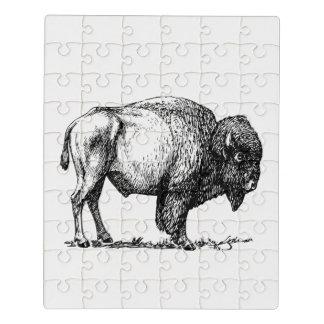 Bisonte americano do búfalo