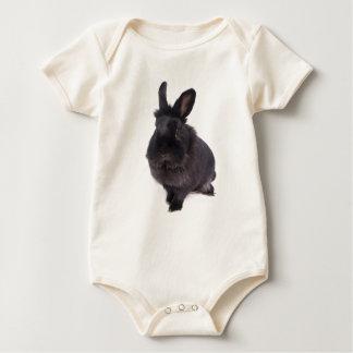 black rabbit babador
