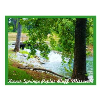 Blefe mais afiado do álamo dos primaveras, cartão postal