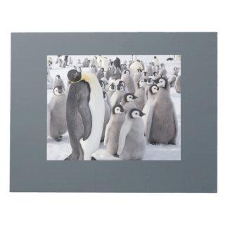 Bloco De Anotação Almofada de nota do pinguim e dos pintinhos de