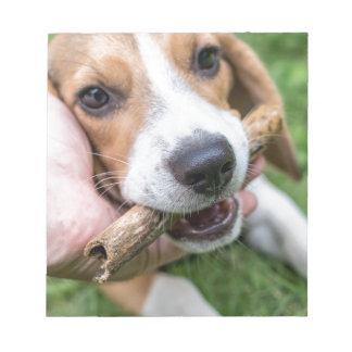 Bloco De Anotação Cão com vara