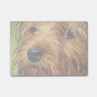 Bloco De Notas Cão adorável de Terrier com uma cara molhada