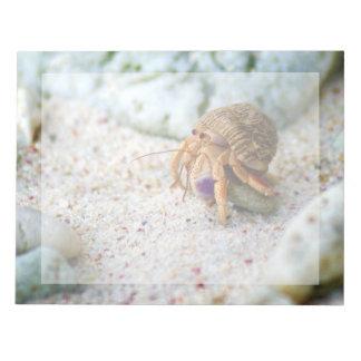 Bloco De Notas Caranguejo da areia, Curaçau, ilhas das Caraíbas,