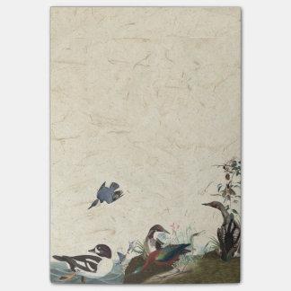 Bloco De Notas Colagem de Audubon de notas de post-it dos animais