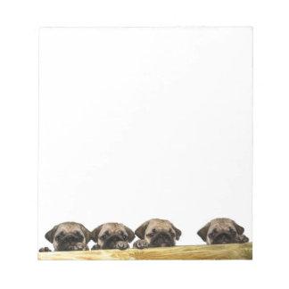 Bloco de notas de quatro Pugs