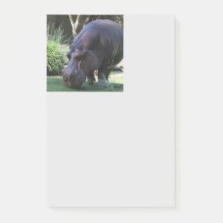Bloco De Notas Hipopótamo AJ17