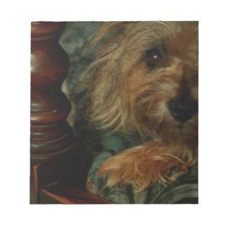 Bloco De Notas Monte de pedras Terrier