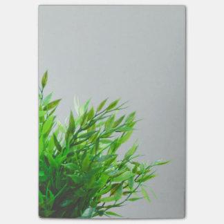 Bloco De Notas Natureza da planta verde do primavera que cresce