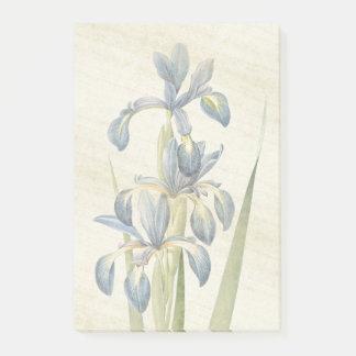 Bloco De Notas Notas de post-it botânicas de Redoute da flor da