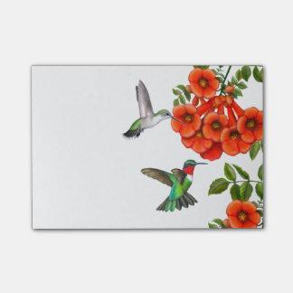 Bloco De Notas Notas de post-it Throated dos colibris do rubi