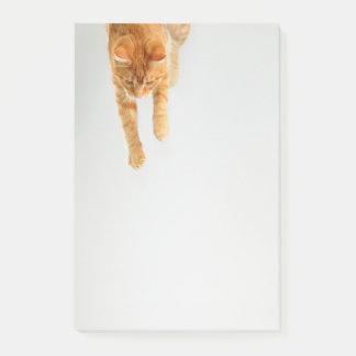 Bloco De Notas O Cargo-it® alaranjado do gato de gato malhado