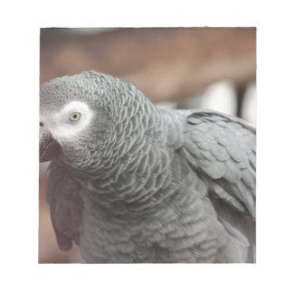 Bloco De Notas Papagaio